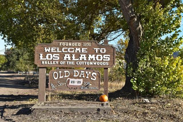445 Main St, Los Alamos, CA 93440 (MLS #20-3730) :: Chris Gregoire & Chad Beuoy Real Estate