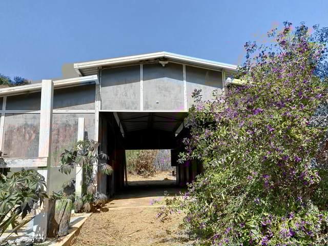 861 E Alamar Ave, Santa Barbara, CA 93105 (MLS #20-3885) :: The Zia Group