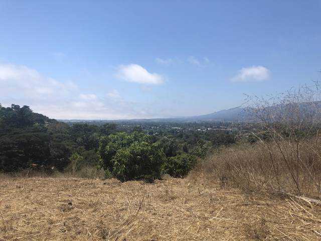 650 Via Trepadora, Santa Barbara, CA 93110 (MLS #20-4165) :: The Epstein Partners