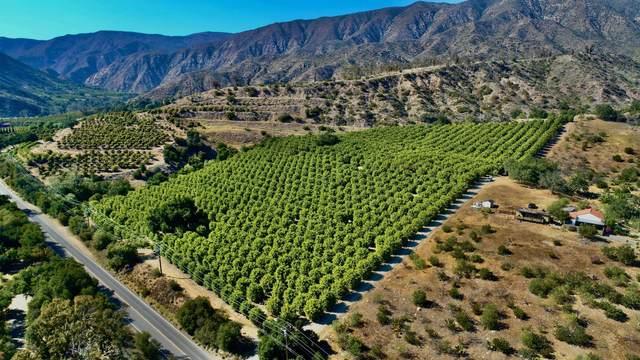 2856 Maricopa Hwy, Ojai, CA 93023 (MLS #21-1869) :: Chris Gregoire & Chad Beuoy Real Estate