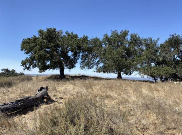0000 Long Valley Rd, Santa Ynez, CA 93460 (MLS #21-395) :: Chris Gregoire & Chad Beuoy Real Estate