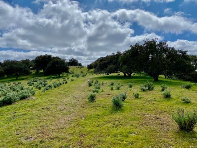 0000 Long Canyon Rd, Santa Maria, CA 93454 (MLS #21-580) :: Chris Gregoire & Chad Beuoy Real Estate