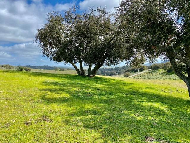 000 Long Canyon Road, Santa Maria, CA 93454 (MLS #21-581) :: Chris Gregoire & Chad Beuoy Real Estate