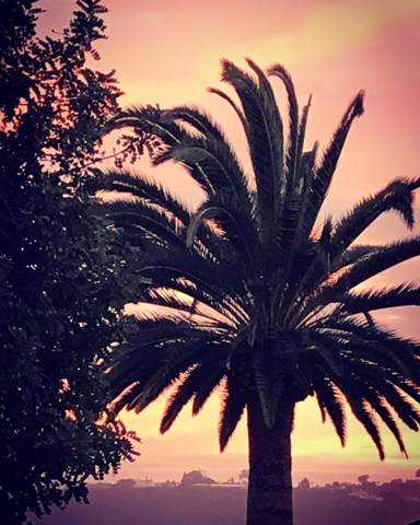 1632 Loma St, Santa Barbara, CA 93103 (MLS #RN-15895) :: Chris Gregoire & Chad Beuoy Real Estate