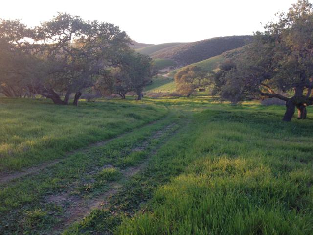 4755 Sweeney Rd, Lompoc, CA 93436 (MLS #16-3093) :: The Epstein Partners
