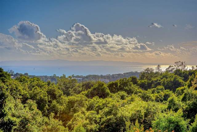 2885 Hidden Valley Ln, Montecito, CA 93108 (MLS #19-3623) :: The Zia Group