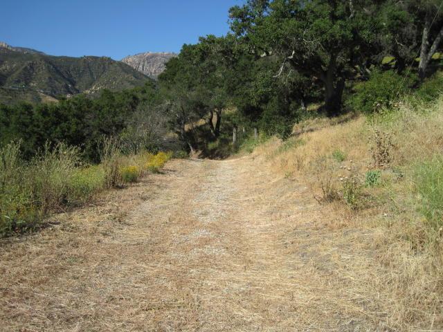 1550 San Roque Road, Santa Barbara, CA 93105 (MLS #18-1611) :: Chris Gregoire & Chad Beuoy Real Estate
