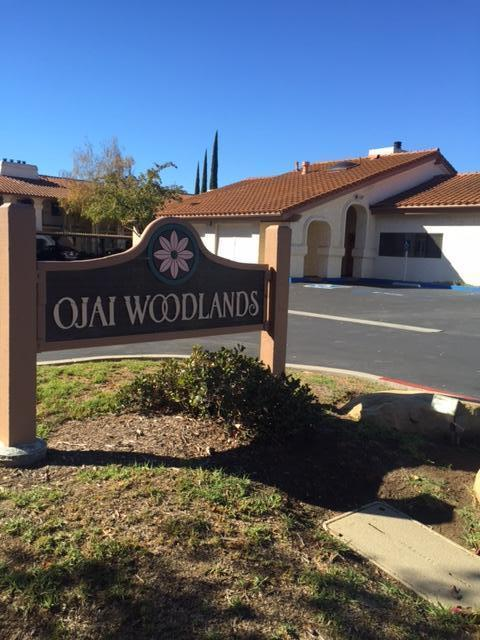 848 Woodland Ave #26, Ojai, CA 93023 (MLS #18-3255) :: The Zia Group