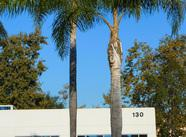130 Castilian Dr #100, Goleta, CA 93117 (MLS #18-4096) :: The Zia Group