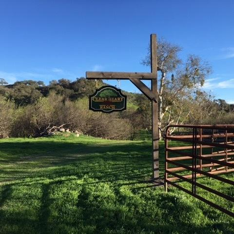 5410 Foxen Canyon Rd, Los Olivos, CA 93441 (MLS #18-892) :: The Zia Group