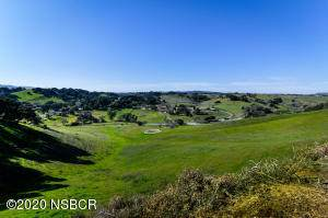 1230 Fredensborg Canyon Rd, Solvang, CA 93463 (MLS #20-1111) :: The Zia Group