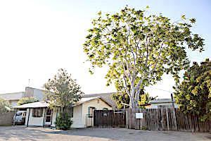 5920 Matthews St, Goleta, CA 93117 (MLS #19-2042) :: The Zia Group