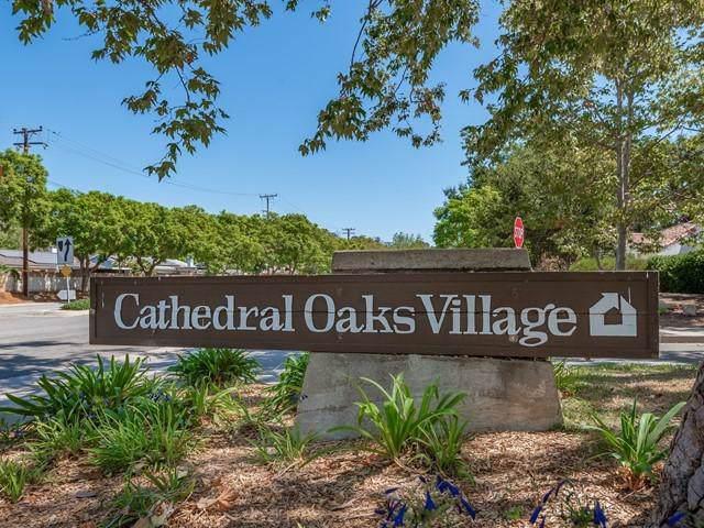 753 Avenida Pequena, Santa Barbara, CA 93111 (MLS #19-3225) :: The Zia Group