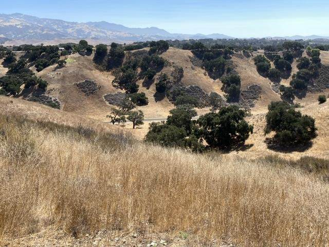 0000 Long Valley Rd, Santa Ynez, CA 93460 (MLS #20-2946) :: Chris Gregoire & Chad Beuoy Real Estate