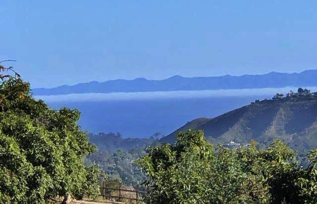 3756 Foothill Rd, Santa Barbara, CA 93105 (MLS #20-162) :: The Zia Group