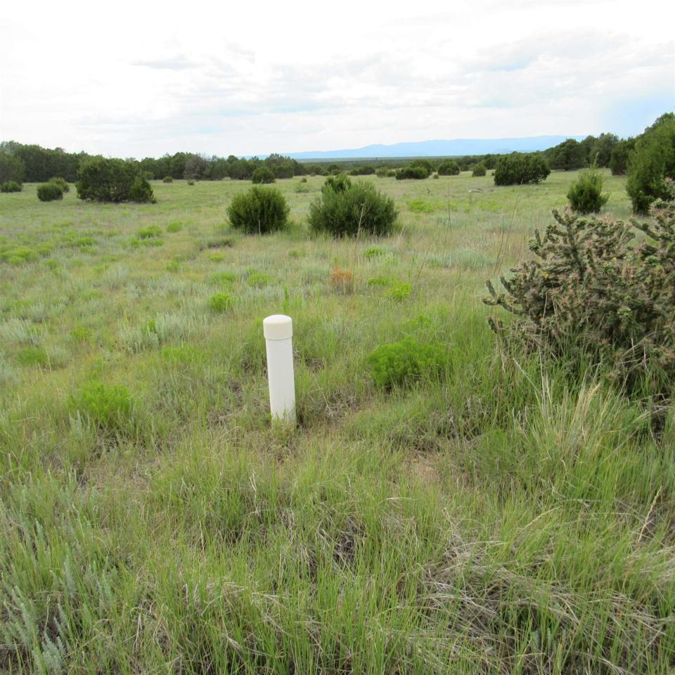 80 Apache Mesa Road - Photo 1