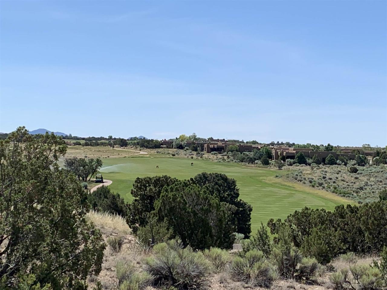 3 Via Palomita (Lot 7, Black Mesa) - Photo 1