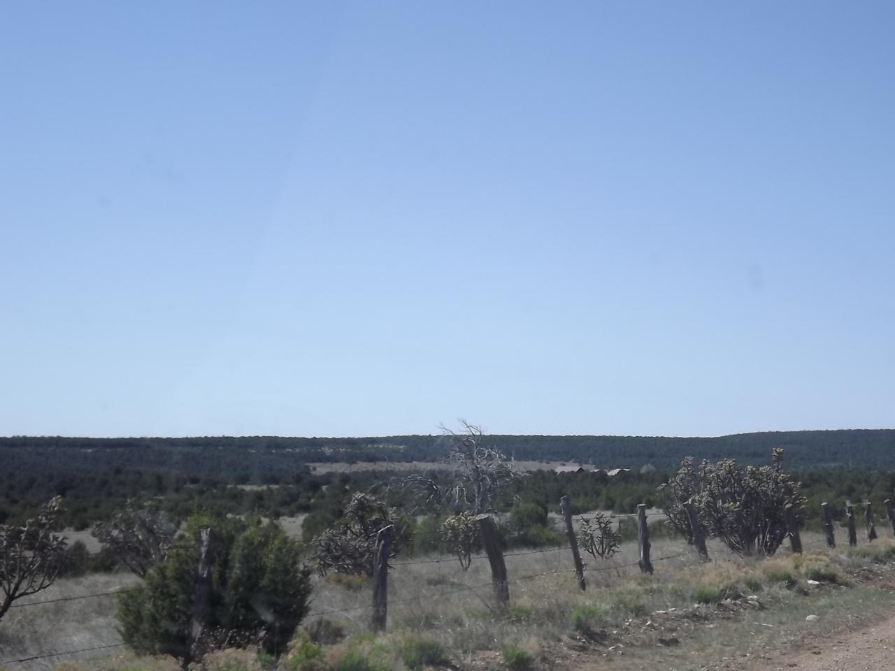 66 Gallegos Road - Photo 1