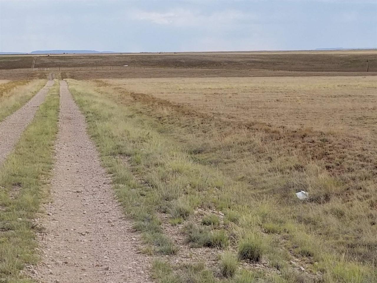 44 D Gates Farm Road - Photo 1