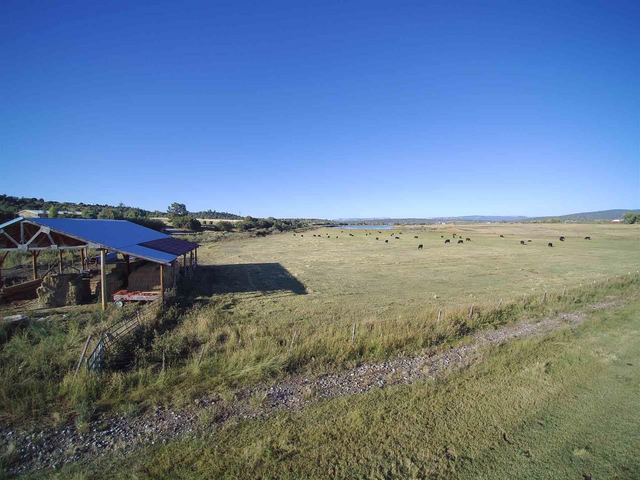 Hatchery Rd Farm - Photo 1