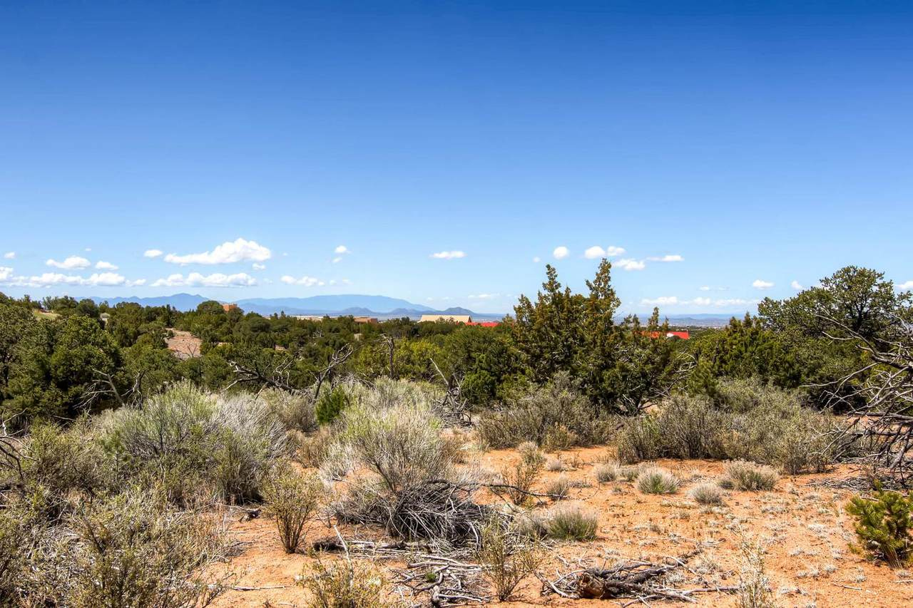 7254 Old Santa Fe Trail - Photo 1