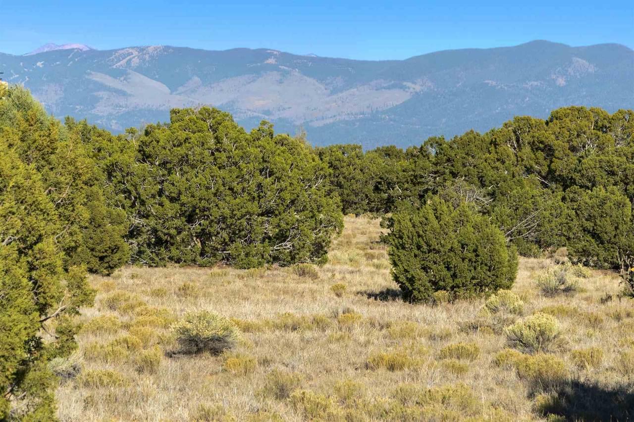 19 Green Meadow Loop, Lot 386 - Photo 1