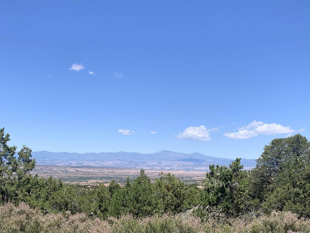 45 Pacheco Meadow - Photo 1