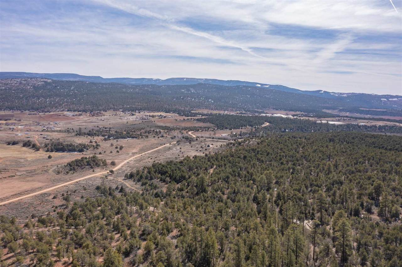 TBD Us Forest Rd #1008 - Photo 1