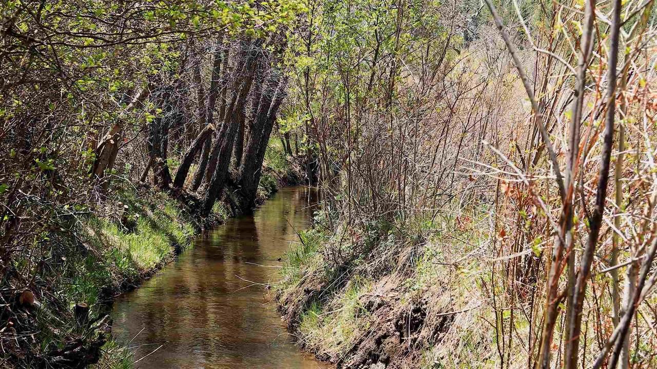 Vallecitos, New Mexico - Photo 1