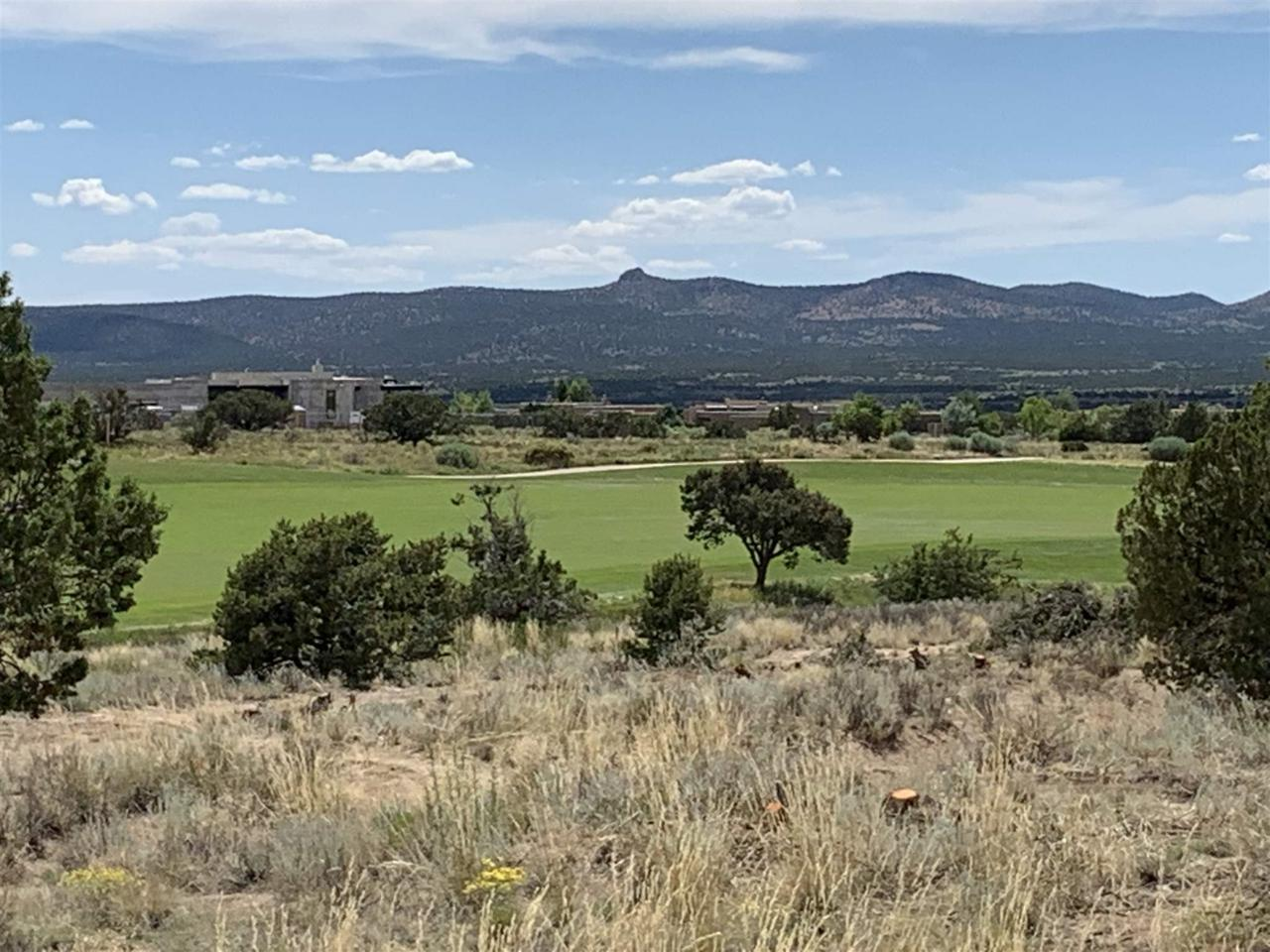 9 Via Palomita (Lot 10, Black Mesa) - Photo 1