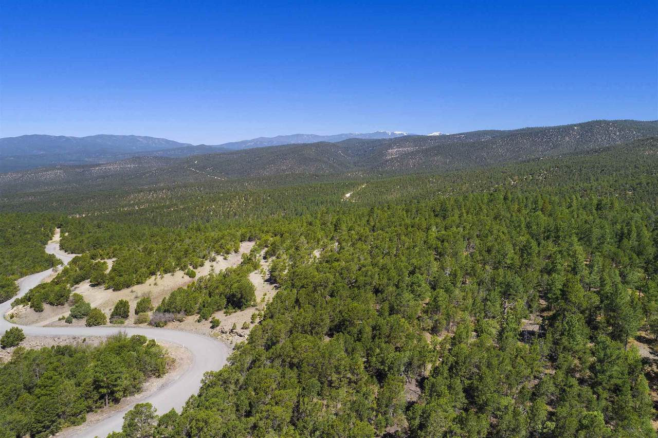 47 Silver Feather Trail Lot 6 - Photo 1