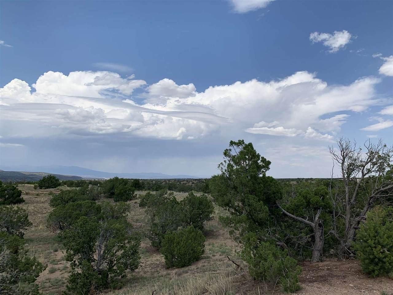 11 Campo Rancheros - Photo 1