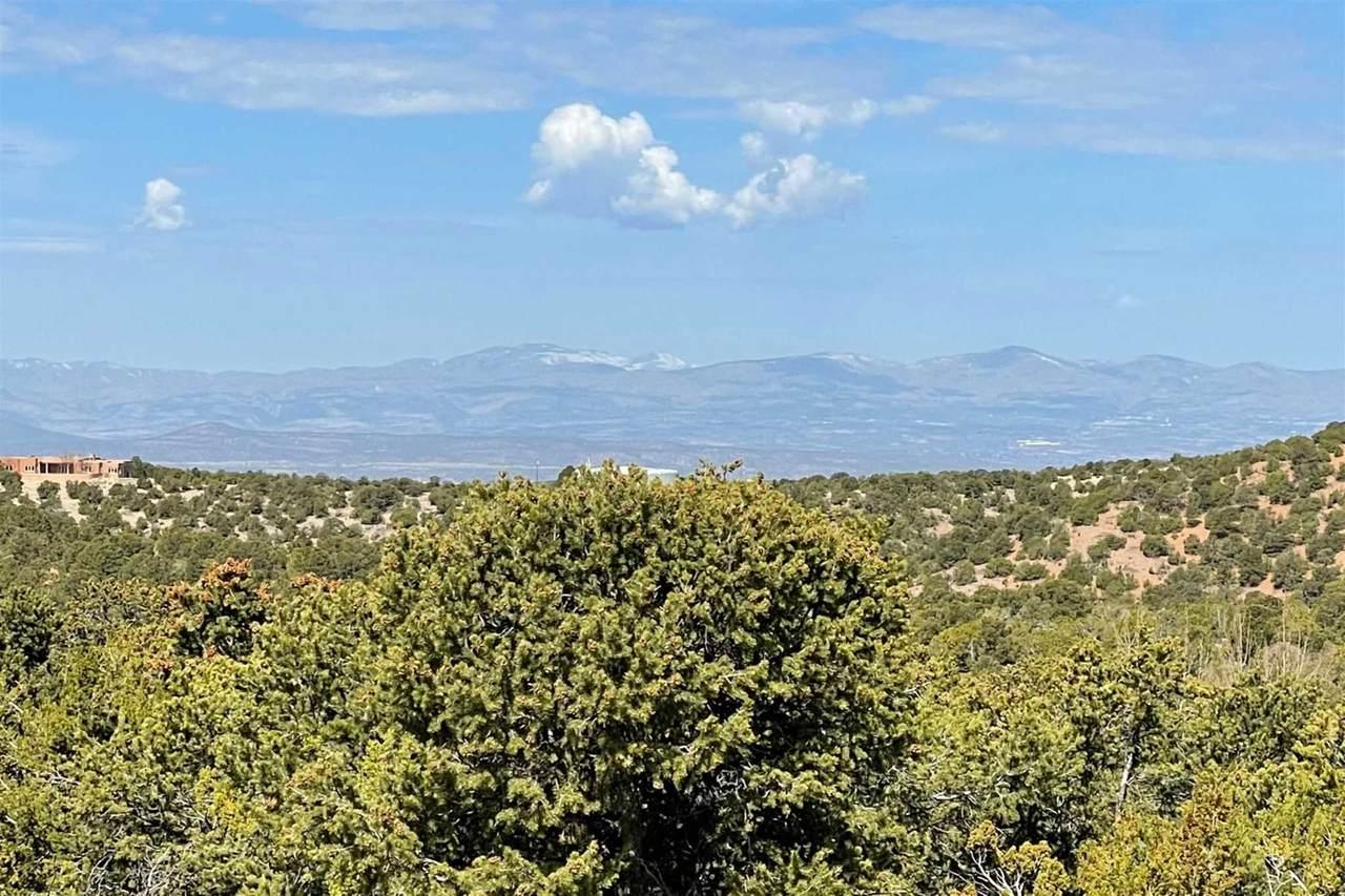 2063 Cerros Altos - Photo 1