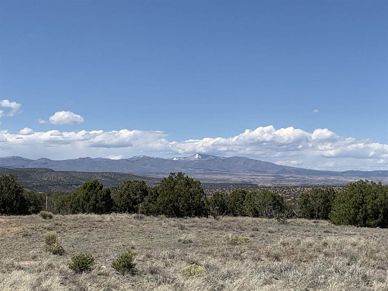 26 Via Del Caballo (Tesoro Enclave, Lot 116) - Photo 1
