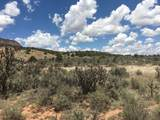 County Rd. 0211 Wilderness Gate Ranch - Photo 24