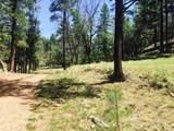 0 Mineral Hill Ranch - Mineral Hills - Photo 4