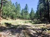 0 Mineral Hill Ranch - Mineral Hills - Photo 5