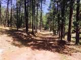 0 Mineral Hill Ranch - Mineral Hills - Photo 6