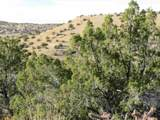 Madrid Heights, 100 Acres Off Nm Highway 14 - Photo 19