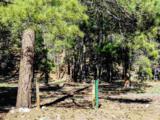 36A 1751 Millstone Subdivision - Photo 4