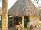 Lacuna Hacienda Mexico - Photo 19