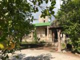 Lacuna Hacienda Mexico - Photo 27