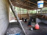 Lacuna Hacienda Mexico - Photo 41