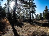 3 Ponderosa Pines, Buckman - Photo 12