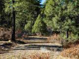3 Ponderosa Pines, Buckman - Photo 26