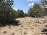 "Lot ""T"" Fort Heron Preserve - Photo 4"