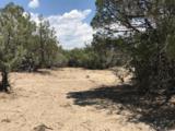 "Lot ""T"" Fort Heron Preserve - Photo 9"