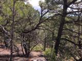 143 La Cueva Road - Photo 9