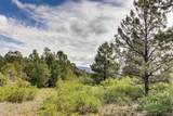 58 Silver Feather Trail - Photo 11