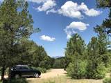 58 Silver Feather Trail - Photo 4